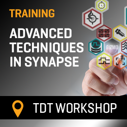 TDT Workshop: Advanced Techniques in Synapse